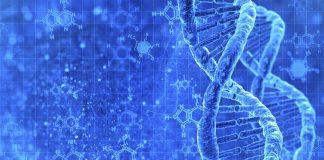 danh mục nguyên liệu hoạt chất làm thuốc