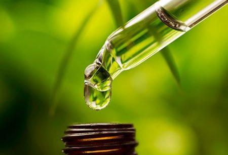 Hướng dẫn sản xuất thuốc từ dược liệu