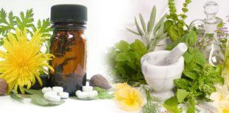 hoạt động kinh doanh dược liệu