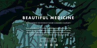 Dự thảo GMP sản xuất thuốc Dược liệu