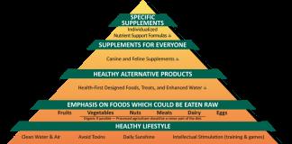 Đính chính danh mục nguyên liệu dược chất làm thuốc