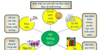 Công văn 8028/QLD-CL