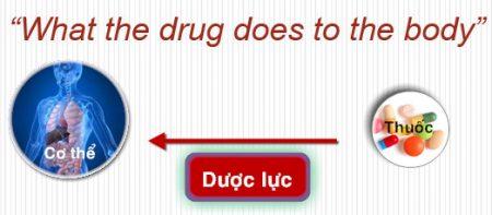 Bài 2 Đại cương về Dược lực học