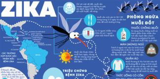 """Quyết định 5083/QĐ-BYT về việc ban hành """"Hướng dẫn kỹ thuật phun mù nóng trong phòng chống bệnh sốt xuất huyết Dengue và Zika"""""""