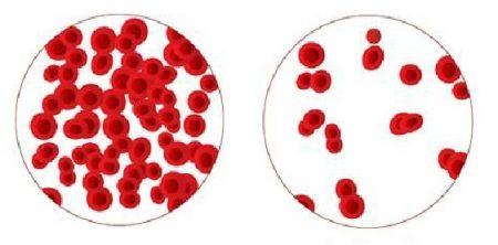 Thuốc điều trị thiếu máu