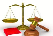 Tin xử phạt vi phạm hành chính