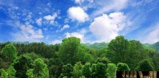 Công văn 243/QĐ-QLD BAN HÀNH DANH MỤC 02 VẮC XIN ĐƯỢC CẤP SỐ ĐĂNG KÝ LƯU HÀNH TẠI VIỆT NAM - ĐỢT 35 (SỐ ĐĂNG KÝ CÓ HIỆU LỰC 05 NĂM)