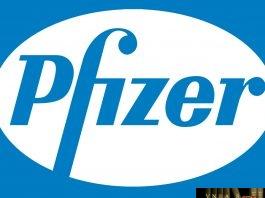 Prizer regulatory affairs manager